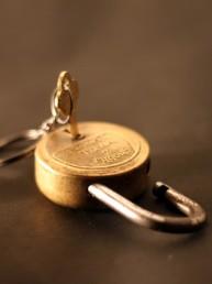 Der-Schlüssel-zum-Erfolg-heisst-Erfolgsfeld-Pflege