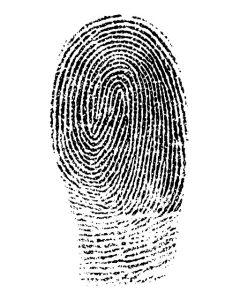 einmalig Identität Unikum
