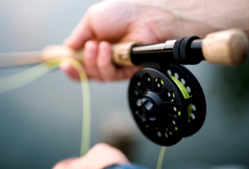 angeln ködern einfangen