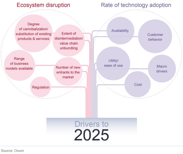 Ovum_Digital_Economy_2025_Research_Extract